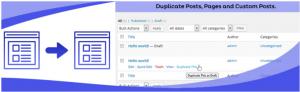 duplicate page image